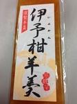 iyokanyokan02.JPG